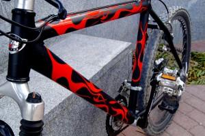 bici_llamas1